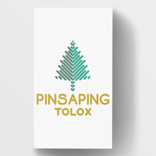 pinsaping